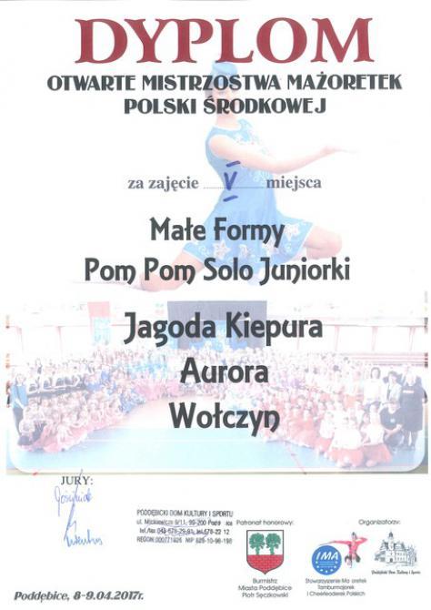 Galeria Poddębice 2017