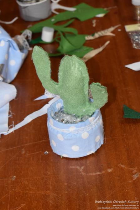 Galeria Wakacje WOK - Kaktus